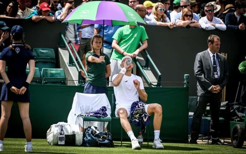 Wimbledon Beginner's Guide: Dates, Venus, Tickets Cost